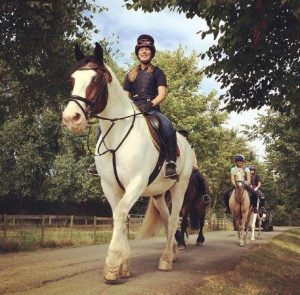 Advanced Horse Riding Lessons