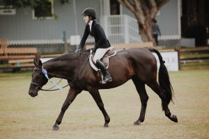 Different Types of Horse Riding Activities